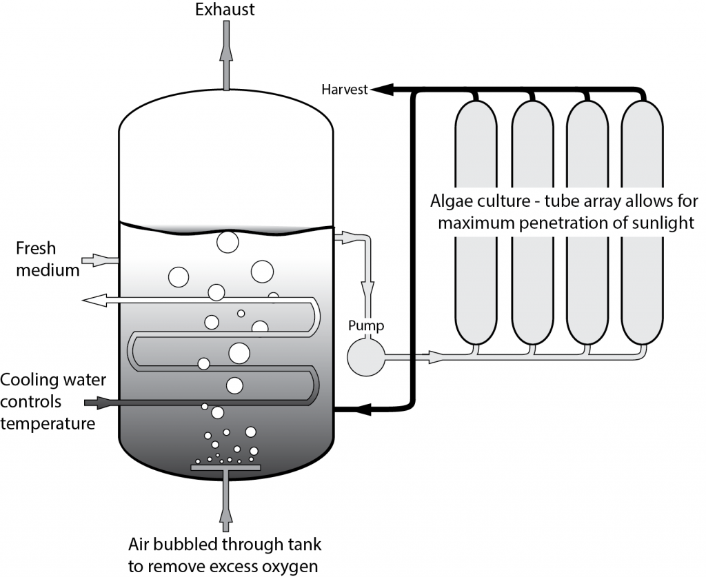 Figure 4.  A schematic drawing of a photobioreactor. Image: PREC